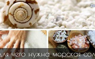 Чем полезна морская соль для организма человека