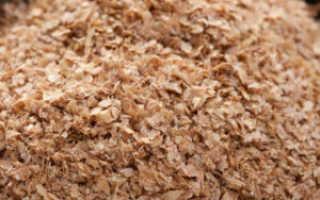 Чем полезны пшеничные отруби