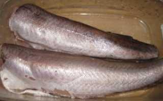 Рыба хоки польза и вред
