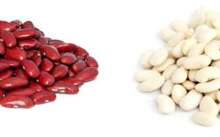 Полезнее белая или красная фасоль