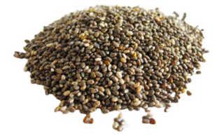 Чиа семена польза и вред