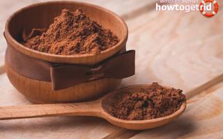 Польза какао порошка