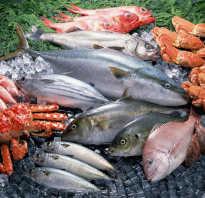 Полезная морская рыба список