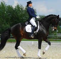Чем полезен конный спорт