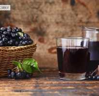 Компот из черноплодной рябины польза и вред