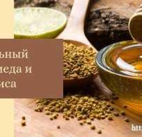Прополисный мед полезные свойства и противопоказания
