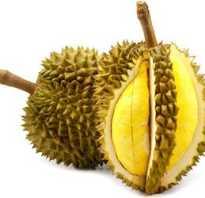 Чем полезен фрукт дуриан