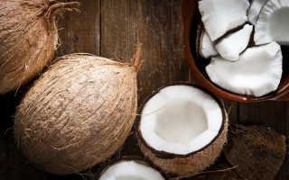 Чем полезна мякоть кокоса