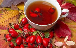 Полезные свойства чай из шиповника