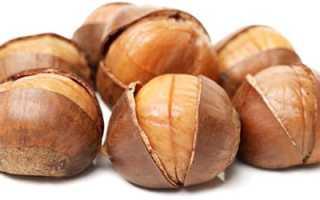 Каштан орех полезные свойства