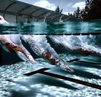 Плавание в ластах польза