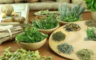 Полезные травы для печени