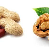 Что полезнее арахис или грецкий орех