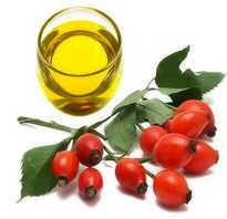 Чем полезно масло шиповника