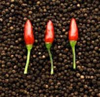 Какой перец полезнее красный или черный
