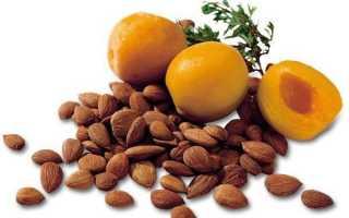 Ядра абрикоса чем полезны
