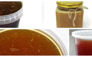 Чернокленовый мед полезные свойства