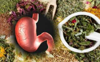 Полезные травы для кишечника и желудка