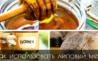 Липовый мед полезные