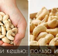 Чем полезны кешью орешки