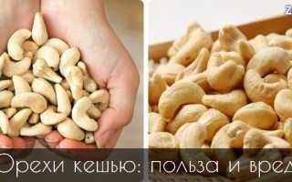 Орех кешью полезные свойства