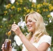 Польза гречишного меда для организма человека
