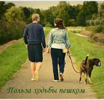 Чем полезна ходьба пешком для мужчин