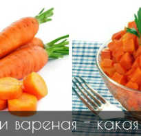 Что полезнее вареная морковь или сырая