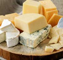 Что в сыре полезного