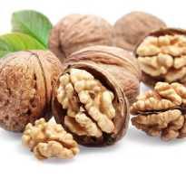 Чем полезны перепонки грецкого ореха