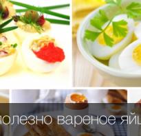Полезны ли вареные яйца