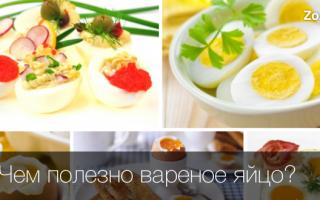 Чем полезно вареное яйцо