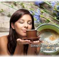 Чем полезен цикорий растворимый для женщин