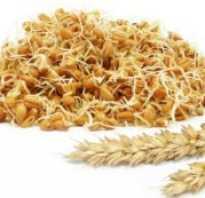 Проросшая пшеница польза и вред как принимать
