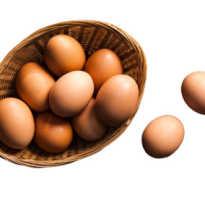 Яйца вред