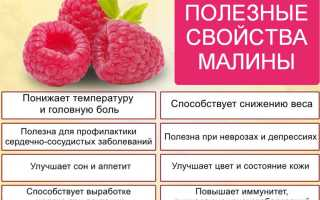 Чем полезна при простуде малина