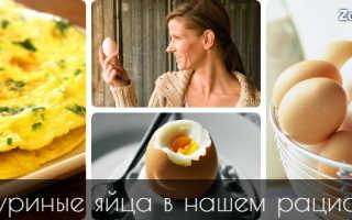 Полезнее сырые или вареные яйца