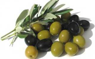 Чем полезны маслины консервированные