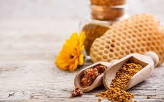 Полезные свойства перги пчелиной