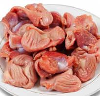 Полезны ли желудки куриные