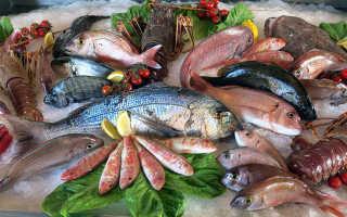 Полезные свойства рыбы для организма человека