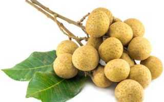 Лонган фрукт полезные свойства