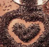 Чем полезны семена чиа как их употреблять