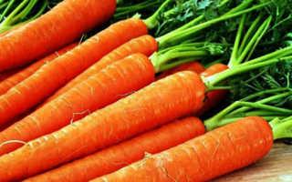Полезнее сырая морковь или вареная