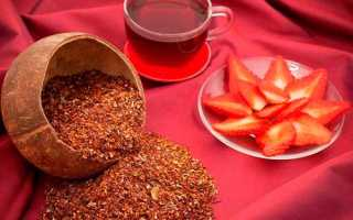Чай ройбуш полезные свойства и противопоказания