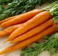 Моркови полезные свойства и противопоказания