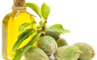 Масло оливковое чем полезен