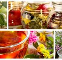 Полезные травы для чая