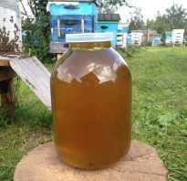 Мед полезен или нет