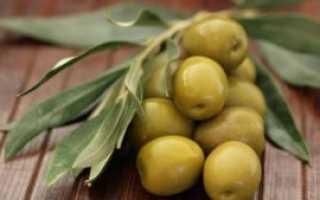 Чем полезны оливки зеленые